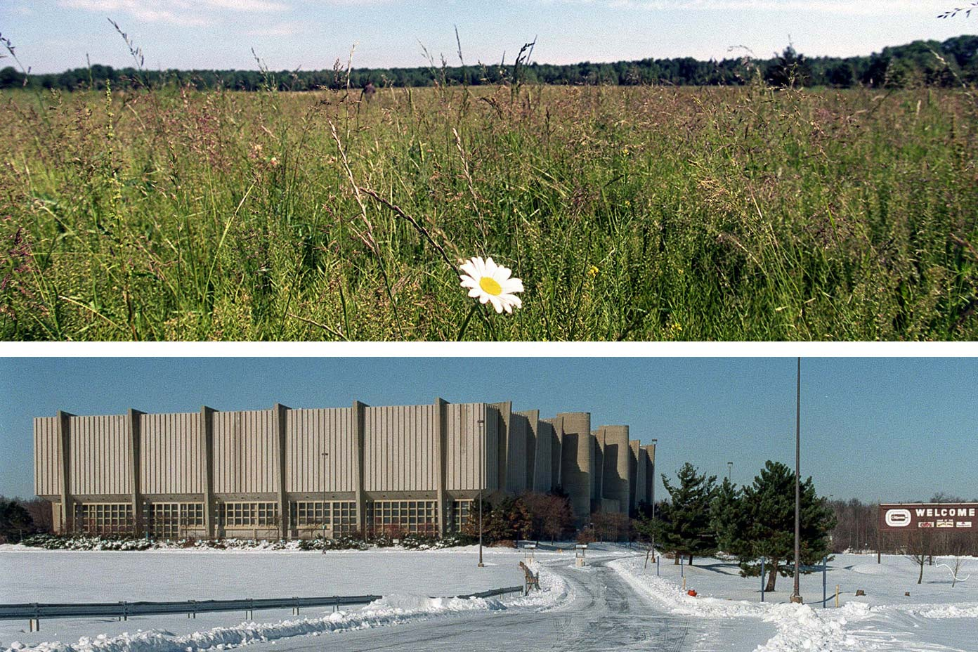 At top, a photo of the Coliseum at Richfield, in winter. At bottom, a photo of a field of tall grass (where the Coliseum once stood)